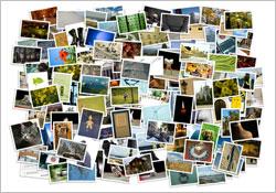 Beruf als Bildredakteur